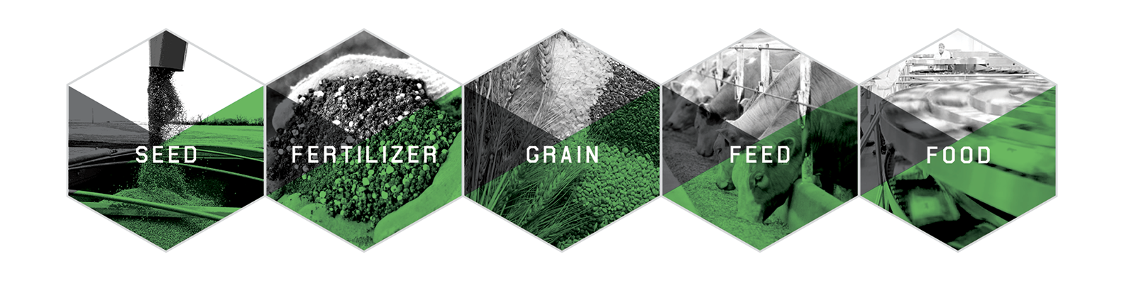 AGI operates across five platforms: Seed, Fertilizer, Grain, Feed, and Food