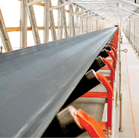 Receiving Tripper Conveyors