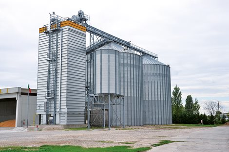 Italy 3000 tons Wheat & Maize