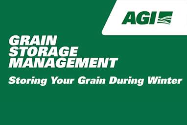 Storing Your Grain During Winter